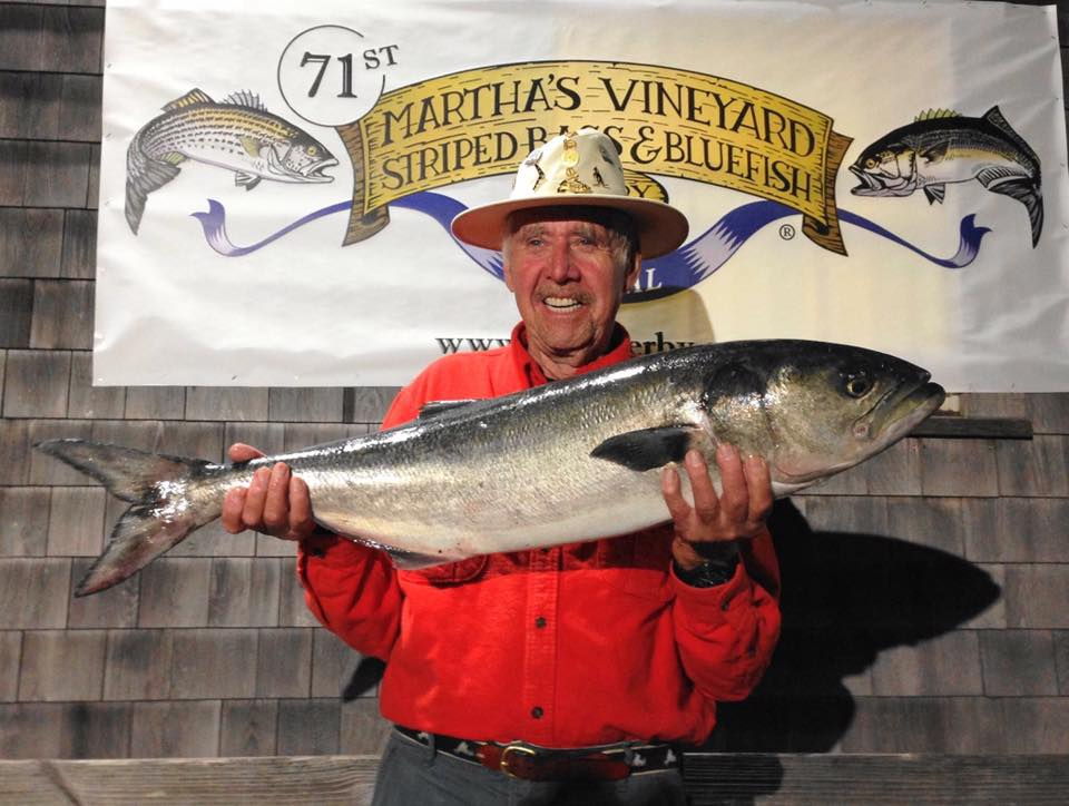 Marthas vineyard striped bass derby